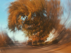 2/16 (nikaylasnyder) Tags: motion blur long exposure swirl landscape trees homes houses mcdonalds blue skies fall autumn filter