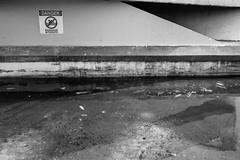 IMG_9959 (Christine Lortie) Tags: hochelaga mercier maisonneuve hochelagamaisonneuve noiretblanc blackandwhite