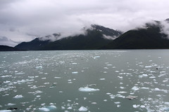 IMG_0461 (EliaZane) Tags: alaska glacier mendenhall sea ocean ice blue cruise