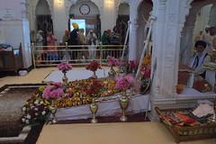 Inside of the Takht Sri Keshgarh Sahib Gurudwara(Sikh Temple)