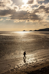 Early Morning Stroll, Down by the Sea, Swansea