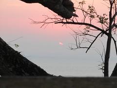 hula hoop sat 087 (Learn, Love, Conserve) Tags: hulahoop saprissa puntaleona feriaverdearanjuez