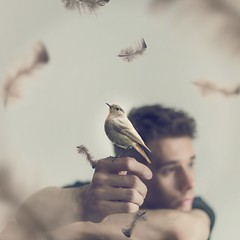 Perhaps I'll Be a Bird One Day (MAR_S_) Tags: boy portrait selfportrait bird art animal project surrealism fineart fine feather surreal calm portraiture conceptual fineartphotography surrealphotography conceptualphotography conceptualportrait conceptualportraiture surrealportraiture joelrobison wonderweeks
