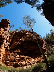 "Alligator Gorge • <a style=""font-size:0.8em;"" href=""http://www.flickr.com/photos/44919156@N00/16853335280/"" target=""_blank"">View on Flickr</a>"