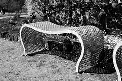 Shapes and shadows (blondinrikard) Tags: park metal bench gteborg grid spring pattern sweden may parkbench shape curved maj bnk kurvig parkbnk metalbench bjd
