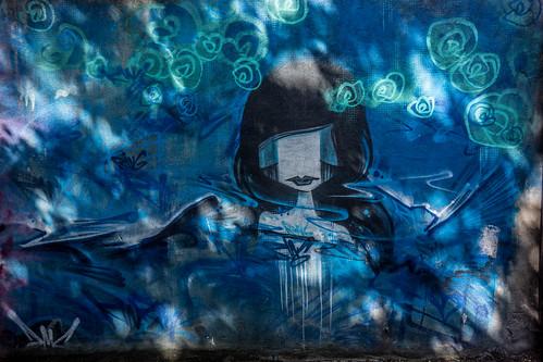 STREET ART IN DUBLIN - CABRA PARK URBAN GALLERY [A REALLY UGLY LANE]-104069