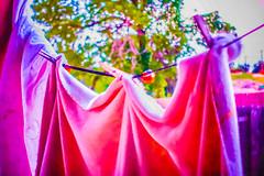 20150622-DSC02051.jpg (mcreedonmcvean) Tags: 20160717 firstlight laundryonthebackporch