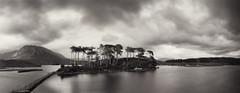 Connemara, pinhole (DavidO'Brien) Tags: ireland blackandwhite film pinhole connemara delta100 lensless reallysosubtle