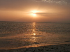 P4100178_2 (salmansaleh1) Tags:  sea photo photoshop takephoto enjoyable enjoy beach enjoyment relaxation     sunset rise sunlight follower