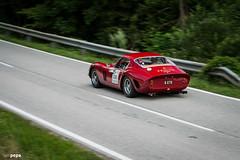Ferrari 250 GTO (iampepa) Tags: 2016 austria ennstal ennstalclassic oldtimer290716 cars ferrari ferrari250gto 250gto gto 250 rosso drivetastefully petrolicious