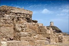 nora (heavenuphere) Tags: nora pula provinceofcagliari cagliari sardegna sardinia sardinie italia italy europe island roman preroman town archaeological site seagull gull bird rocks tower lighthouse 24105mm