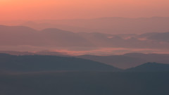 Illumination (T. Morris) Tags: fog sunrise landscape scenery colorful pastel scenic telephoto westvirginia valleys natureconservancy dollysods landscapephotography singleexposure bearrocks dollysodswilderness daviswestvirginia intimatescenes