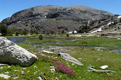 View of Tioga Crest to the east. (openspacer) Tags: inyocounty inyonationalforest