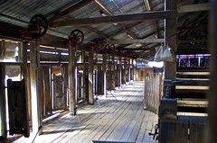 shearing board (outback traveller) Tags: historic seq