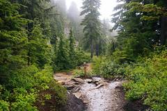 IMG_4183.jpg (Backpacking With Bacon) Tags: washington northerncascades hiking mtpilchuck granitefalls unitedstates us