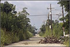 New Orleans 2016 - 22 (derekwatt) Tags: travel summer film analog 35mm nikon exploring neworleans lousiana analogphotography 35mmphotography nikonf4 c41 filmphotography unicolor