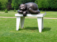 Dutje (Merodema) Tags: sculpture art cat table nap sleep kunst kitty round katze curve curved poes tafel rond dutje ronding