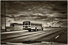 LvdH (2008) (Lex van der Holland) Tags: school usa bus miami schoolbus