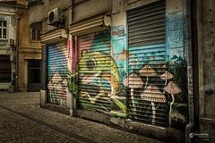 Plovdiv Art III (p.debraux) Tags: plovdiv bulgaria old town kapana europe country travel street urban destination art