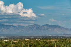 1607 Santa Catalina Mountains from Ironwood National Forest (c.miles) Tags: cathedralrock clouds coronadonationalforest mountkimball puschpeak puschridgewilderness santacatalinamountains tablemountain windowpeak