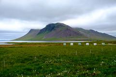 Grundarfjörður - 1/500 - f/5 - 25.4 mm (38 mm)
