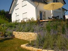 Nische für Sitzbank (Jörg Paul Kaspari) Tags: dudeldorf eifel sommer summer garten garden nische