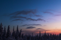 Lappland - Laponie ( Mathieu Pierre photography) Tags: lappland laponie finnland lapland snow north night sky light silence nature landscape northern polar circle markii mark2 skyborne vanguard b0 benro tma28a tripod f28 1635 rs60e3 bge16 grip 7d eos canon
