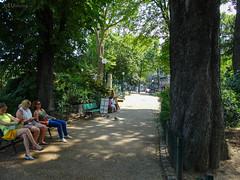 Path through Square de l'Abbe Migne (eutouring) Tags: paris france travel placedenfertrochereau square squaredelabbemigne benches trees path paths