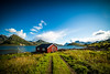 DSC02595 (victor.hamelin) Tags: lofoten norway photography travel lifetravel