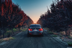 BMW F30 335i (Richard.Le) Tags: bmw f80 335i twin turbo german landscape vineyard commercial automotive photography richard le sony a7rii natural available light fire firefighter dirt outdoor car saloon sedan tripod single point shoot center usa repost m power f30