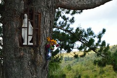 Fontana Marenga (mttdlp) Tags: d3200 albero landscape madonna three montagna mountain