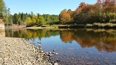 Down By The River (TheNovaScotian1991) Tags: salmonriver samsungs6edge video waterreflections autumncolors fall canada novascotia truro