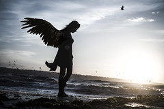 dark angel (cagdas topcu) Tags: seaside sea sunset sunrise angel dark darkness street road light rise wing wings fe55mmf18 sonyilce7r a7r sonya7r wave waves sunlight fansatic seagull seagulls