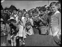 Eastwood pet parade, 5 September 1951, Sam Hood (State Library of New South Wales collection) Tags: statelibraryofnewsouthwales