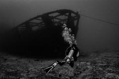 Felipe Xicotencatl (jcl8888) Tags: scuba wreck shpwreck cozumel mexico diving diver nikon d7200 nauticam tokina 1017mm fisheye travel adventure marine alive life ocean underwater sea saltwater