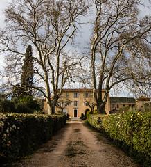 Le Clos Gavotte (franleru1) Tags: france nature architecture arbre printemps saison brignoles architecturetraditionnelle provenceverte