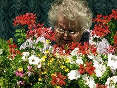 Flower Lady (Red Greg) Tags: flowers lady grandmother colorfull balcony balkon blumen oldlady oma care bunt colourfull sorge altedame grnerdaumen grosmutter