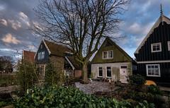 20150131-1654-04 (donoppedijk) Tags: nederland noordholland uitdam