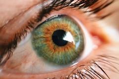 Through his eyes. (Kris *) Tags: light boy brown man macro verde green eye luz ojo march chico he marron marzo hombre iphone 2015 él xkrysx