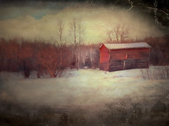 red willow (anniedaisybaby) Tags: winter snow texture rural solitude farm jenny manitoba digitalpainting redbarn interlake skewed outbuilding redwillows barnseries thanksto iphoneography topazimpressions