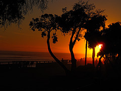 Ventura California Sunset (theeqwlzr) Tags: california trees sunset sky orange beautiful pacificocean wtf southerncalifornia ventura canonrebelxti
