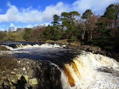 Low Force Middleton Teesdale (trev.pix) Tags: river landscape waterfall rapids splashingwater lowforce rivertees middletonteesdale canonsx50