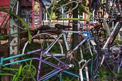 bicycle shambles II (Rasande Tyskar) Tags: color colour art bicycle fence many kunst hamburg bikes bicycles shambles zaun stpauli viele fahrrad bunt streetview farben fahrräder accumulation colourfull shamble wirrwarr hafenstrase febig