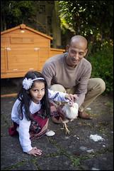 The Chicken Whisperer (*monz*) Tags: white tree chicken girl grass 35mm garden star nikon df child rice patio eggs coop nikkor hen tame f20 pullet monz