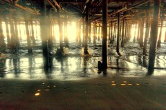 Under the Santa Monica Pier (Joe Lach) Tags: ocean california beach water sand santamonica under pacificocean santamonicapier pylons waterpictorial joelach