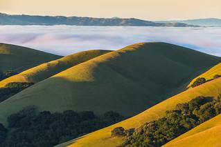 green hills at sunrise