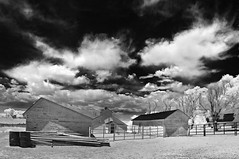down on th farm - infrared (eDDie_TK) Tags: blackandwhite rural ir colorado farming barns co infrared farms rurallife ruralliving weldcounty whitebarns weldcountyco johnstownco