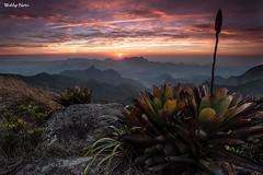 Crepsculo no Morro Au (Waldyr Neto) Tags: sunset mountains montanhas entardecer crepsculo bromlia parnaso au serradosrgos morroau cloudsstormssunsetssunrises