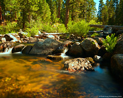 Summertime Flow. (scottducey209) Tags: river water forest logs stanislaus southfork stanislausnationalforest nationalforest northerncalifornia norcal nikon d5200 30 1000x haida tokina 1116mm landscape waterscape flowingwater southforkstanislausriver strawberrycalifornia sonorapasshighway highway108 10stop nd ndfilter longexposure daytimelongexposure summer