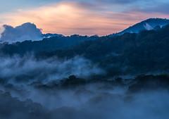 Sundown in the Rainforest of Bali (prose86) Tags: travel red bali orange sun tree nature fog forest dark indonesia rainforest sundown pentax outdoor